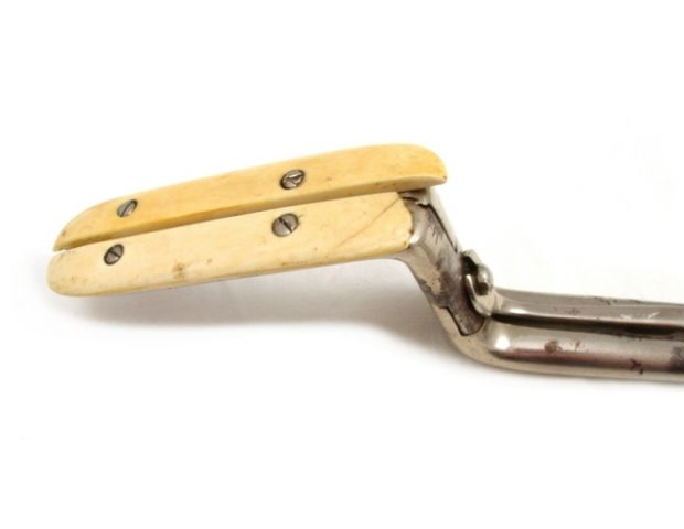 antique-haemorrhoid-clamps-ivory-104