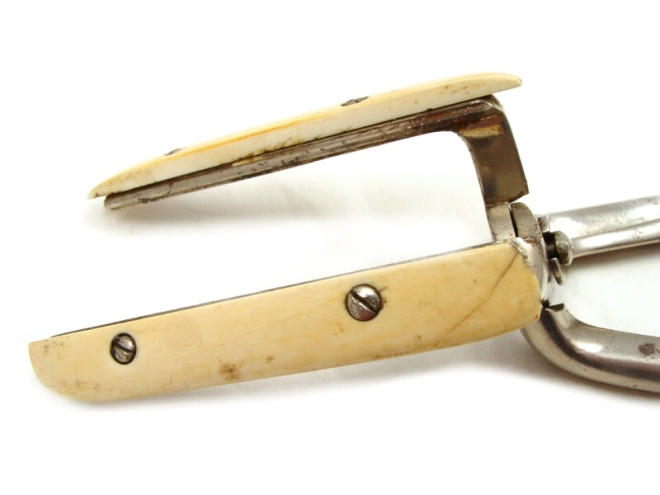 antique-haemorrhoid-clamps-ivory-105