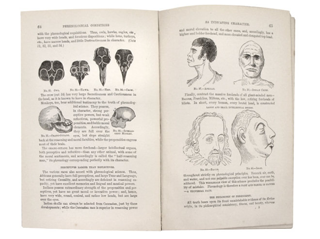 phrenology-self-instructor-fowler-107