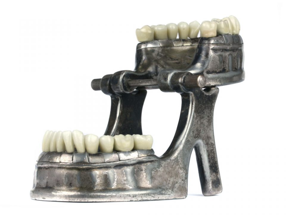 vecabe-dental-model-106
