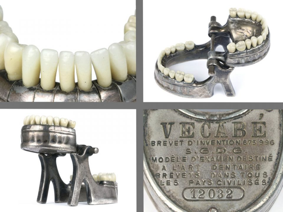 vecabe-dental-model-108